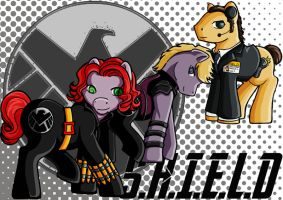 SHIELD Agents by clueless-nu