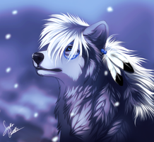 Kyo- Were do I belong by TheMysticWolf