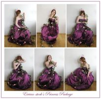 Princess Package by Eirian-stock