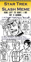 Star Trek Slash Meme by enterprising-bones