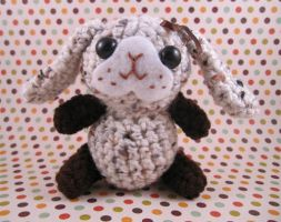Chocolate Chip Bunny Rabbit by AmiTownCreatures