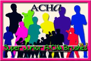 Super Junior A-CHa Brushes 3 by NileyJoyrus14