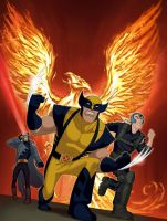 Wolverine and the X-Men DVD by Tonywash