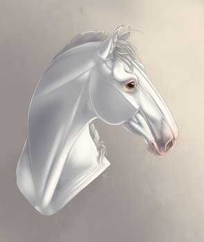 White Horse by Fargonon