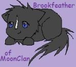Brookfeather by insanityNothing