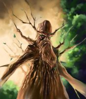 Treant by DragonBrushStudio