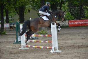 Show jumping Rudow 30 by BRls-love-is-MY-Live