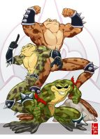 BattleToads by Maiss-Thro