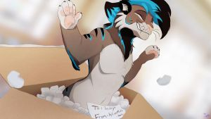 Unboxed  - Comm by Shembre