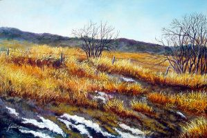 Traces Of Snow by Ravenhaven