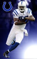 Reggie Wayne by jason284