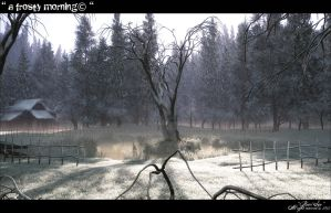 a frosty morning by Massi-San