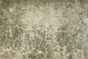Concrete Texture - 34 by AGF81