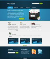 Web Design Company by DRX-Design