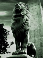 Lion of Kasr el neel Bridge by hussein007