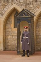 Windsor Castle Guard Stock by Sheiabah-Stock