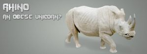 Rhino Timeline Cover 2 by TimelineAndWallpaper