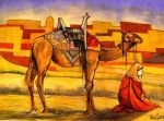 Bedouin Camel by deviantmike423