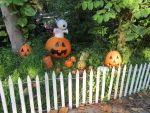 Beginings of a Pumpkin Patch by Dream-finder