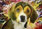 Picasso The Beagle by NorthumbrianArtist
