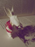 white rabbit by alexobond