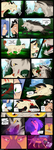 Pokemon Wildfire CH1 Reimound City's Gym Leader p6 by KillerSandy