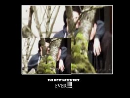 most hated tree by kasienka-nikki