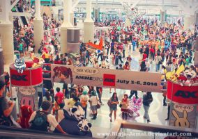 Wild Pokemon Anime Expo 2013 Finale by Ninja-Jamal