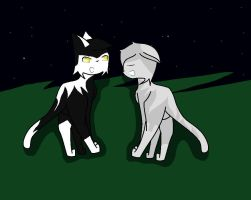 May StarClan guide our journey by XxQueenofChaosxX