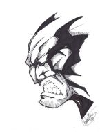 Wolverine by thewickedrobot