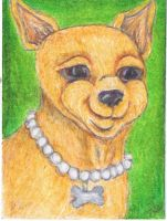 Ritzy Chihuahua by clay-dreams