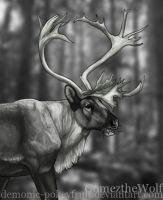 Caribou Portrait by Demonic-Pokeyfruit