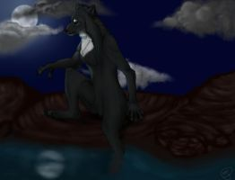 .Fullmoon bath. by KaffeeWolf