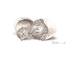 Hatched by marcgosselin