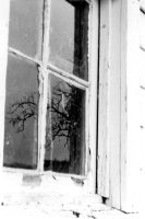 secret window by invisibletape