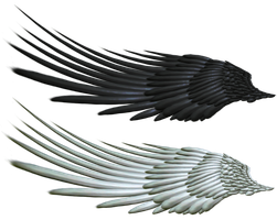 Good and Evil Angel Wing PNG 2 by Thy-Darkest-Hour