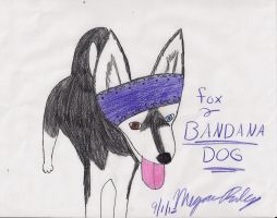 Fox (Bandana Dog) by dolphinsrock2525