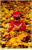 Sitting and playing with leafs by ivye