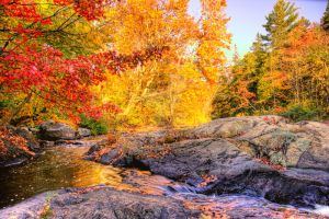 HDR Autumn Falls by Nebey