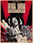 Are You Experienced. Jimmy Hendrix poster by JunkePalacio