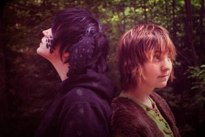 HTTYD - Back to back by Hukkis