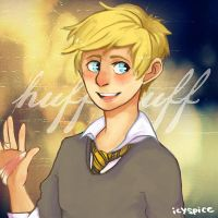 1D: This Kid's a Hufflepuff by spiderweb-heart