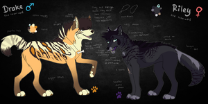 Drake and Riley - Sibling Ref Sheet by whicray