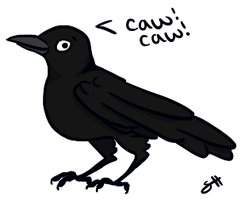 Caw caw by ShirleyHeerd