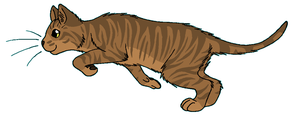 ThunderClan - Adderfang by WildpathOfShadowClan