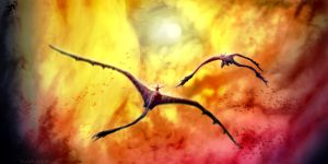 We all fly together by RafaBolas