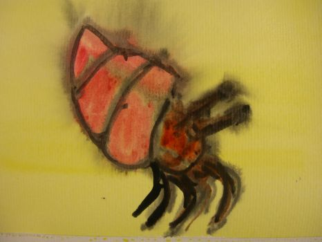 Aquarelle of a Hermit crab by R4VI4TOR