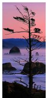 Haystack Rock at Dusk by La-Vita-a-Bella