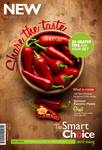 The SmartChoice Magazine Cover by mvgraphics