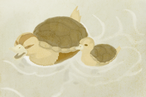 Turtle Ducks by katiepox